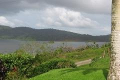 Garrden view